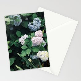 Hydrangeas in the Yard Stationery Cards