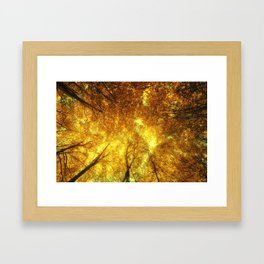 Golden Trees of Endless Dreams Framed Art Print