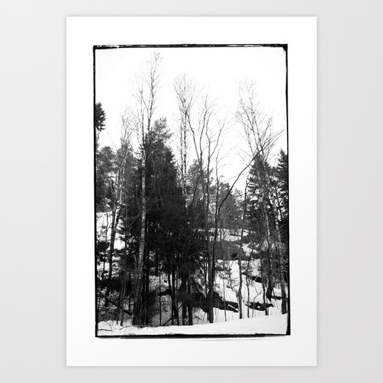 Norwegian forest VII Art Print