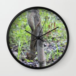 Hanging Squirrel Wall Clock