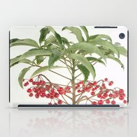 spice iPad Cases featuring Spice Berry  by taiche