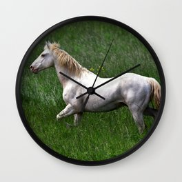 BEAUTIFUL WHITE HORSE Wall Clock