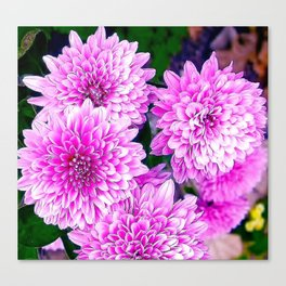Beautiful Pink Flowers Canvas Print