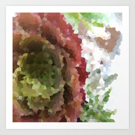Crystallized Red Succulent Art Print