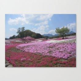 Flower Hills Japan Canvas Print