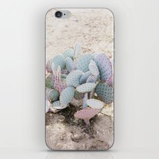 Pink and Mint Cactus iPhone & iPod Skin
