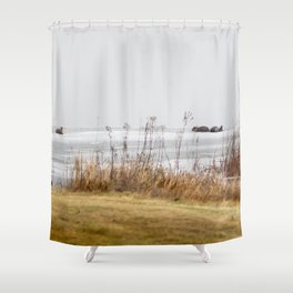 Four Otters Shower Curtain