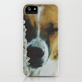 Peaceful Sleep iPhone Case