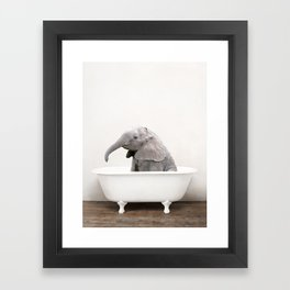 Baby Elephant in a Vintage Bathtub (c) Framed Art Print