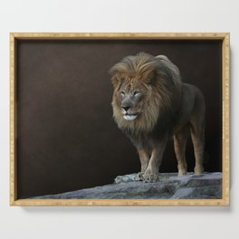 With Age Comes Wisdom - Male Lion Serving Tray