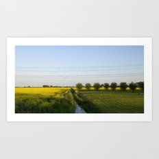Colors in the field Art Print