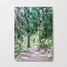 Hiking pathway in a wood in the Alps in summerhiking, walking, trekking, t-shirt, trail, people, lif Metal Print