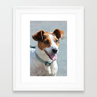 jack russell Framed Art Prints featuring Jack Russell by Doug McRae