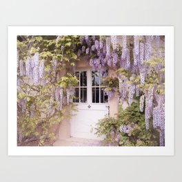 wisteria of the unknown Art Print