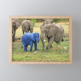 Its a Boy - Blue Baby Elephant Framed Mini Art Print