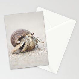 Life & times of a Hermit Crab Stationery Cards