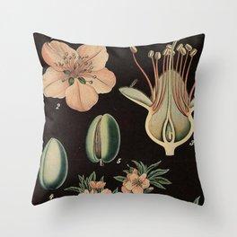 Botanical Almond Throw Pillow