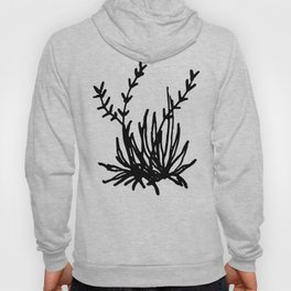 Spider Plant Hoody