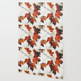 Fall colors in Canada Wallpaper