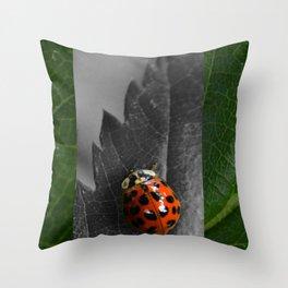Grey Ladybug Throw Pillow
