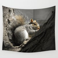 squirrel Wall Tapestries featuring Squirrel by Mandy Becker
