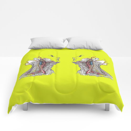 Dual anatomy Comforters