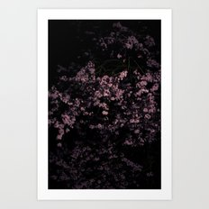 Flash Blossom Art Print