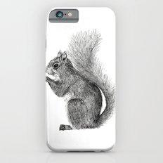 Squirrel in Pen iPhone 6s Slim Case
