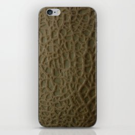 Cantaloupe! iPhone Skin