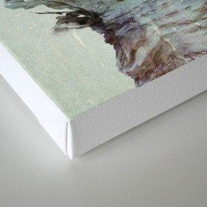 Sonho Canvas Print
