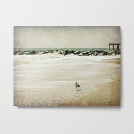 Sea Dream Metal Print