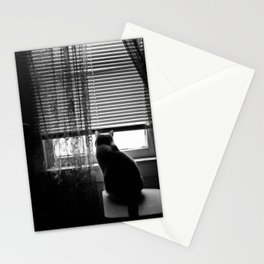 Window cat Stationery Cards