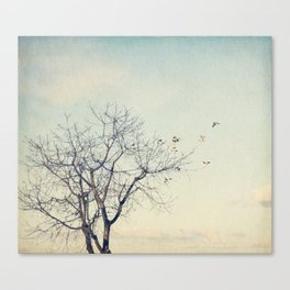 Perfect faith Canvas Print