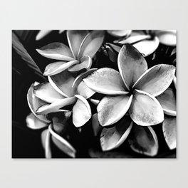 Tropicals B&W Canvas Print