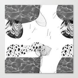 CEBW14-15A Canvas Print