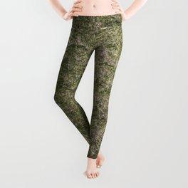 Stone and moss Leggings