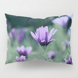 Purple Color Flowers Pillow Sham