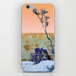 Little Tree on the Canyon V3 - New Hue iPhone Skin