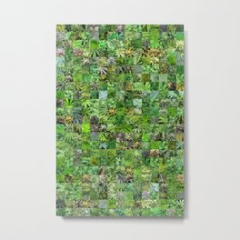 Marijuana Leaves Montage Metal Print