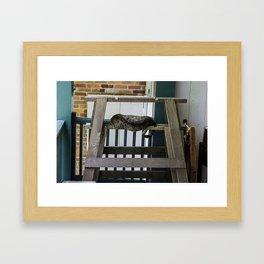 Barnyard Cat Framed Art Print