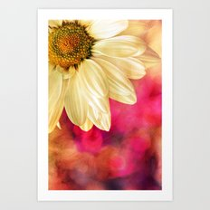 Daisy - Golden on Pink Art Print