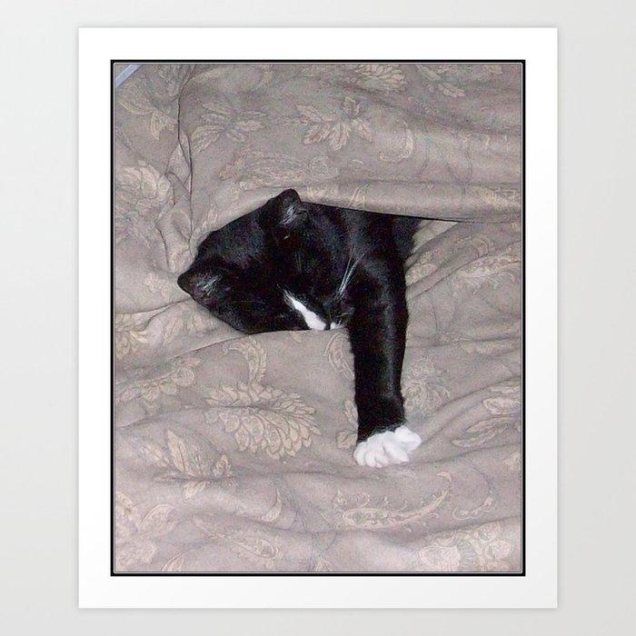 All is Well -or SleepySnoozy Art Print