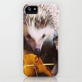 Juni Hedgehog Fall Leaves iPhone Case