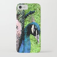 peacock iPhone & iPod Cases featuring Peacock by BeachStudio