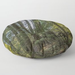 The Woods Around Clear Lake Floor Pillow