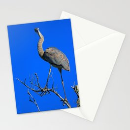 Personal Lunacy Stationery Cards