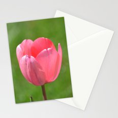 Pink Tulip Stationery Cards