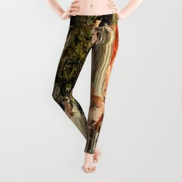 Quarry Wall Leggings