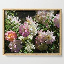 ROSA BONICA ROSE FLOWERS Serving Tray