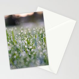 Dew Laden Grass 2 Stationery Cards